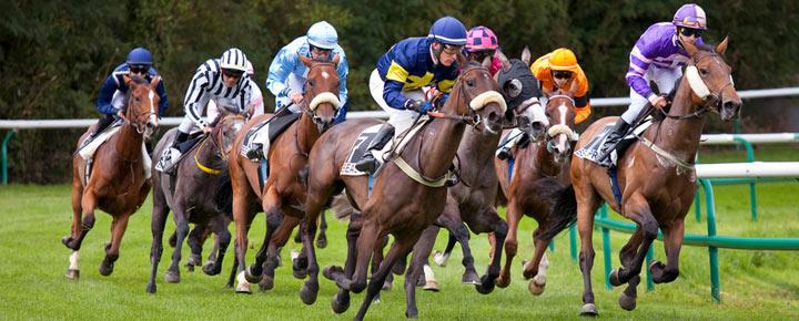 Les éléments à considérer pour jouer aux courses de chevaux